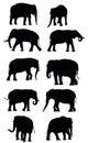 Set of vector black elephants
