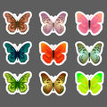 Set of vector butterflies stickers Royalty Free Stock Photo