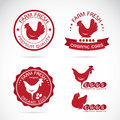Set of vector an chicken and eggs label