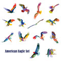 Set of vector colorful american eagles