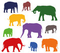 Set of vector colorful elephants silhouettes