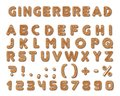 Set of vector gingerbread dark brown cookies tasty delicious shaped english alphabet font letters, icing-sugar covered
