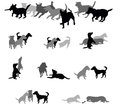 Set of vector group of dogs silhouettes Royalty Free Stock Photo