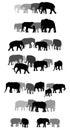 Set of vector group of elephants