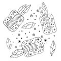 Set of vector hand drawn childish fruits. Cute childlike pineapple with leaves, seeds, drops. Doodle, sketch, cartoon style. Line
