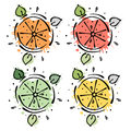 Set of vector illustrations of fruits. Lime, lemon, grapefruit, orange, Hand drawn contour lines and strokes with splash, drops, s Royalty Free Stock Photo