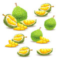 Set of vector illustrations, icons of a durian fruit Royalty Free Stock Photo