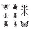 Set of vector insects volume 4 Royalty Free Stock Photo