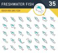 Set Vector Line Icons of Freshwater Fish Royalty Free Stock Photo