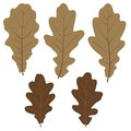 Set of vector oak leaves for your design