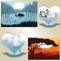 Set of vector pictures on romantic and natural the theme nature couple swans Stock Image