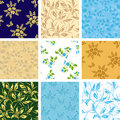 Set of vector seamless patterns with flora Royalty Free Stock Images