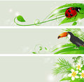 Set vector summer banners flowers green leaves Royalty Free Stock Photos
