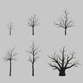 Set of vector trees black silhouettes without leaves Royalty Free Stock Photo
