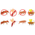Set of vector tropical insect pictures on white background. Vector isolated drawing. Illustration icon in flat style.