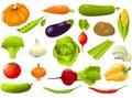Sada skladajúca sa z zelenina