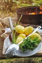 Set of vegetables and fish outdoors in the forest, preparing to cook on the open fire Royalty Free Stock Photo