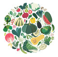 Set of vegetables and herbs forming a round shape clip art perfectly Royalty Free Stock Photo