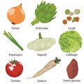 Set vegetables isolated different on a white background Royalty Free Stock Photography