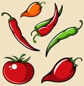A set of vegetables. Tomato, red and green chili pepper, habanero. Vector illustration Royalty Free Stock Photo