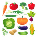 Set of vegetables. Vegetarian food. Isolated on white background.