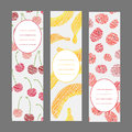 Set of vertical fruit banners harvest berry ornament vector illustration ornaments scratched banana cherry and raspberry flyer Stock Photography