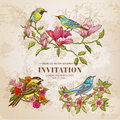 Set of Vintage Flowers and  Birds Royalty Free Stock Photo