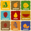 Set of vintage fruits icons on separate labels retro signs poster vector illustration Stock Image