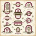 Set vintage grapes labels badges woodcut style fully editable eps vector illustration Royalty Free Stock Photo