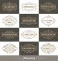 Set of vintage logo template with flourishes calligraphic frames elegant ornament Royalty Free Stock Images