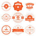Set of vintage style elements for labels and badges for organic food