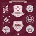 Set of vintage styled design hipster icons vector background Royalty Free Stock Photo