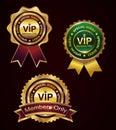 Set of vip badge Royalty Free Stock Photo