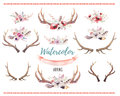Set of watercolor floral boho antler print. western bohemian de