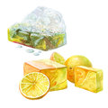 Set of watercolor handmade bath soap with fruits and herbal isolated Royalty Free Stock Photo