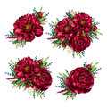 Set of watercolor red peonies bouquets