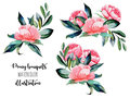 Set of watercolor red peonies and green leaves bouquets illustrations
