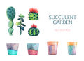 Set of watercolor succulent and a flower pot. Royalty Free Stock Photo