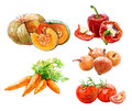 Set of watercolor vegetables onion, paprika, parrot, tomatoes, pumpkin isolated