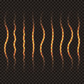 Set of wavy transparent golden lines. Royalty Free Stock Photo