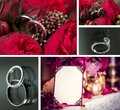 Set of wedding rings in red rose and on black background Stock Images