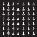 Set of White Christmas Trees. Vector Illustrations. Royalty Free Stock Photo