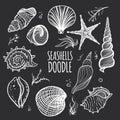 Set of white seashells on black background Royalty Free Stock Photo
