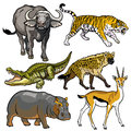Set with wild animals of africa african beasts pictures isolated on white background Royalty Free Stock Image