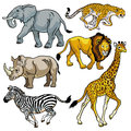 Set with wild animals of africa beasts savanna pictures isolated on white background Stock Photography