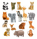 Set of wild animals isolated on a white background Stock Images