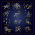 Set of zodiac signs in floral style 1 Royalty Free Stock Photo