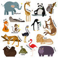 Set of zoo cartoon animals. Flat style design Royalty Free Stock Photo