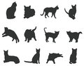 Sets of silhouette cats, create by vector Stock Photos