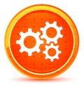 Settings gears icon natural orange round button Royalty Free Stock Photo